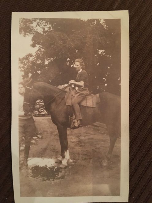 ernie horse